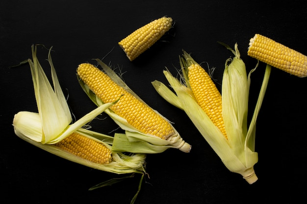 Top view fresh corn composition