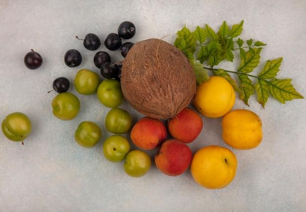 Vista dall'alto di frutta fresca come prugna ciliegia verde cocco prugna viola scuro isolato su uno sfondo bianco