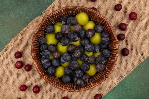 Vista dall'alto di frutta fresca come prugnole viola scuro con prugna ciliegia verde su un secchio su un panno di sacco su uno sfondo verde