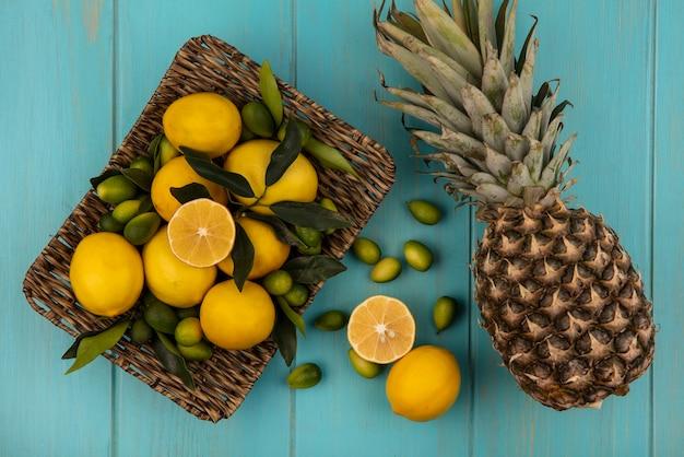Vista dall'alto di frutta fresca come kinkan e limoni su un vassoio di vimini con ananas isolato su una superficie di legno blu