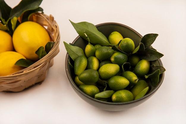 Vista dall'alto di limoni freschi su un secchio con kinkans su una ciotola su un muro bianco