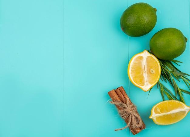 Vista dall'alto di limoni freschi con set di bastoncini di cannella e dragoncello su blu con spazio di copia