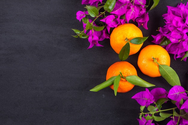 Top view fresh oranges with purple flowers with copy space on dark surface