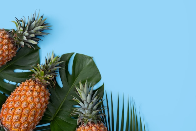 Top view of fresh pineapple with tropical palm and monstera leaves on blue table background.