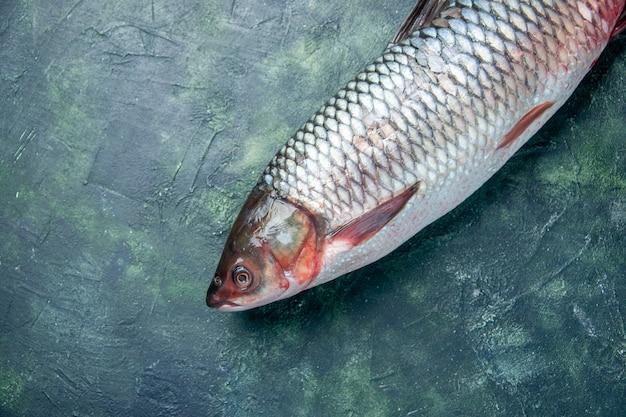 Vista dall'alto pesce crudo fresco su sfondo blu scuro