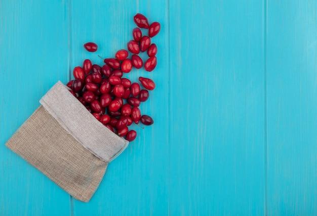 Vista dall'alto di bacche di corniolo rosso fresco che cadono dal sacchetto di tela da imballaggio su un fondo di legno blu con lo spazio della copia