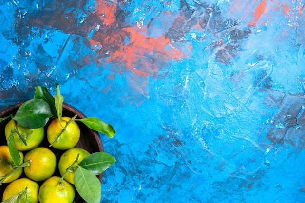 Top view fresh tangerines with leaves in wooden bowl on red blue isolated surface free place