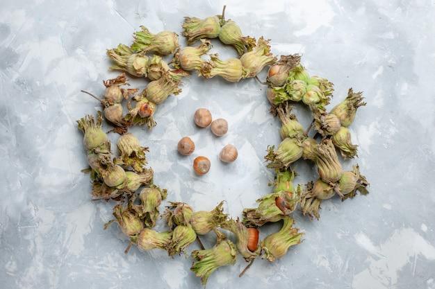 ライトデスクナットヘーゼルナッツクルミ植物の木の皮と新鮮な全体のヘーゼルナッツの上面図