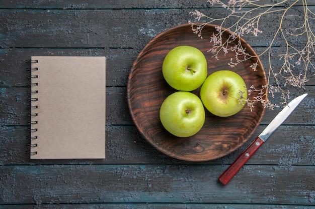 어두운 표면에 있는 칼 회색 공책과 나뭇가지 옆에 있는 식욕을 돋우는 사과 나무 접시의 멀리 있는 전망