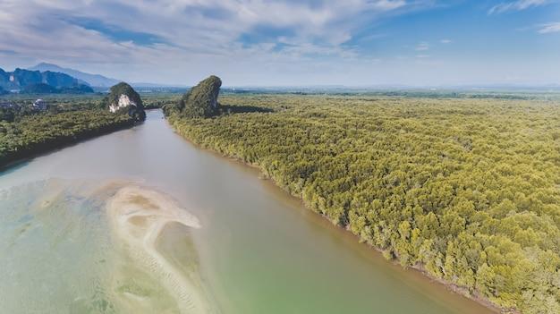 長い川とマングローブの森の空からの平面図。