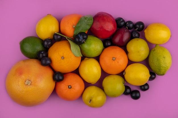 Vista dall'alto mix di frutta pompelmo arance limoni limette prugna ciliegia prugna e pesca su uno sfondo rosa