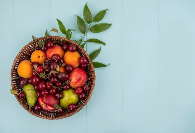 Top view of fruits as cherry peach apricot pear in basket with leaves on blue background with copy space