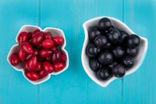 Vista dall'alto di frutti come bacche di corniolo e prugnole in ciotole su sfondo blu