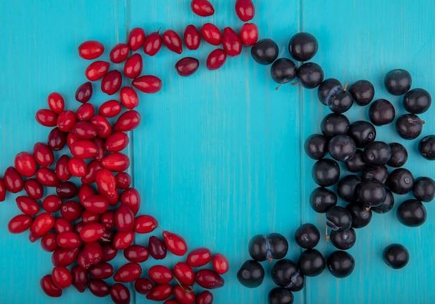 Vista dall'alto di frutti come prugnole e bacche di corniolo impostato in forma rotonda su sfondo blu con copia spazio
