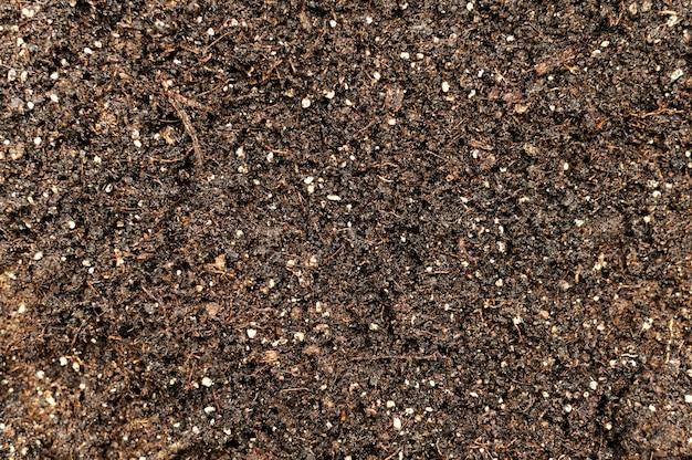 Top view gardening soil