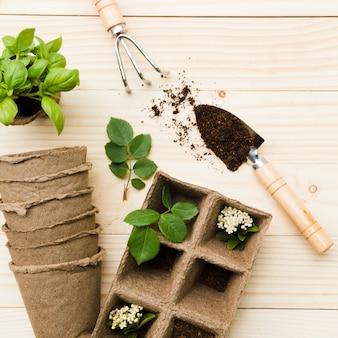 上面図の園芸工具および植物
