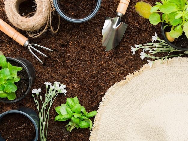 Вид сверху садовые инструменты и растения
