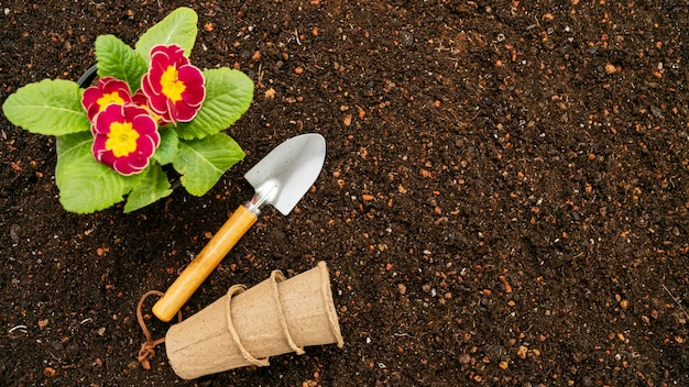 Top view gardening tools and flower pot
