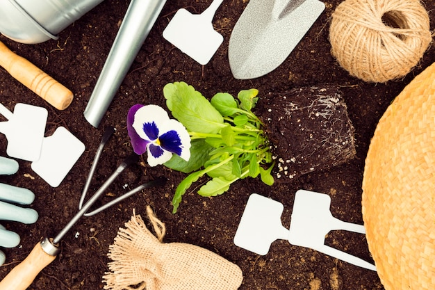 Top view gardening tools and plants on soil