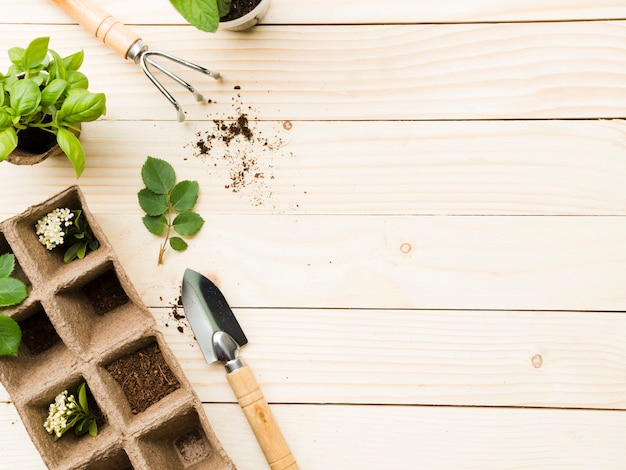 Top view gardening tools and plants