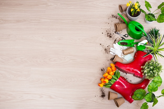 Top view of gardening tools, potted plants, spring flowers and space for text on wooden table background