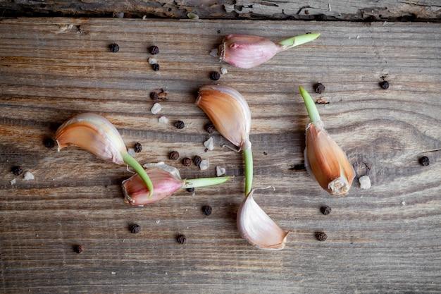 Top view garlic on dark wooden background. horizontal
