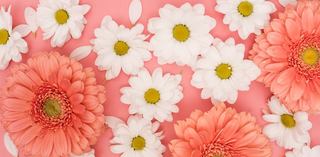 Top view gerbera and white daisies arrangement