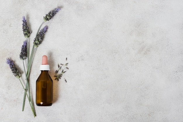 Top view glass bottle and lavender copy space
