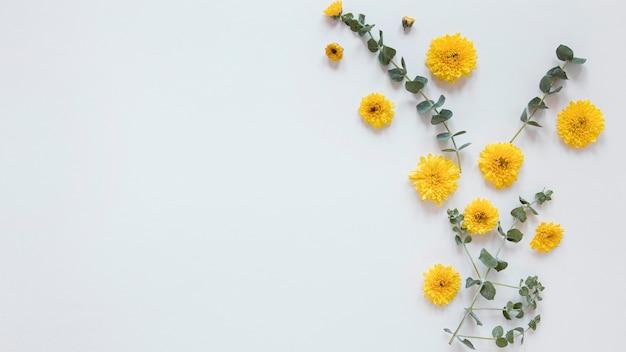 Top view of gorgeous flowers arrangement