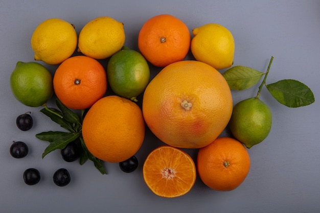 Vista dall'alto pompelmo con arance limoni limette e prugne ciliegia su sfondo grigio