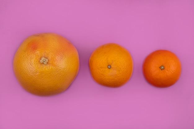 ピンクの背景にオレンジとグレープフルーツの上面図