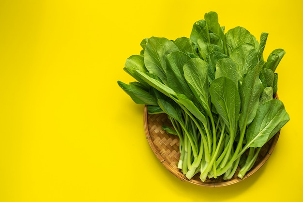 Top view of green fresh cantonese green cabbage