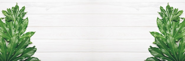 Top view of green leaves on white wooden background
