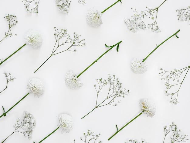 잎과 꽃의 상위 뷰 그룹