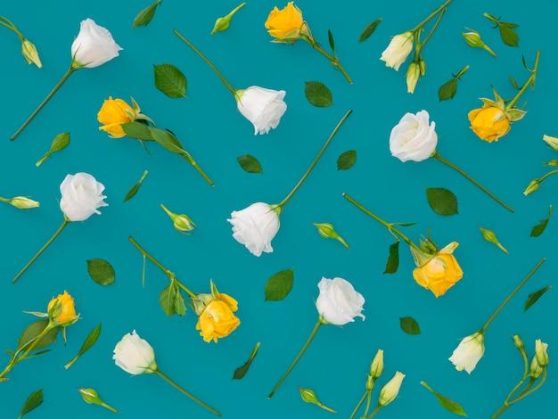 葉と花の上面図グループ 無料写真