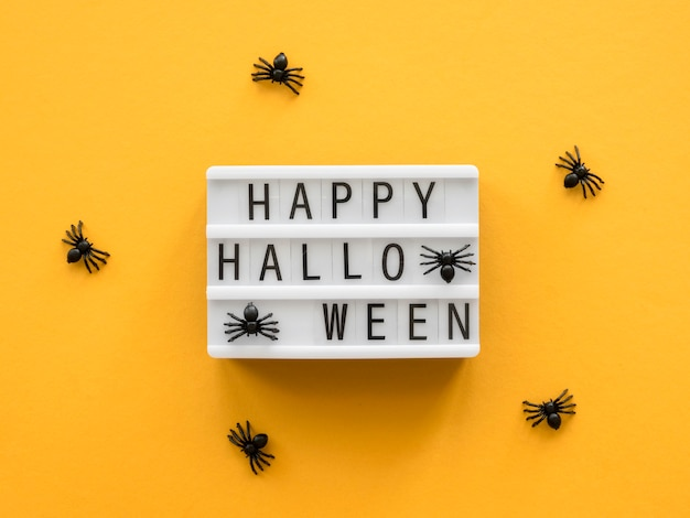 Top view halloween concept with greeting and spiders