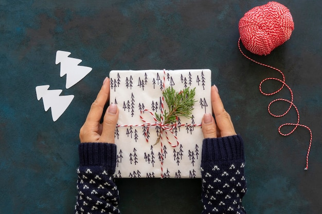 Vista dall'alto delle mani che tengono il regalo di natale con lo spago e la pianta