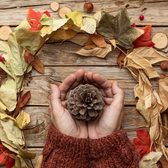 Top view of hands holding pine cone with autumn leaves