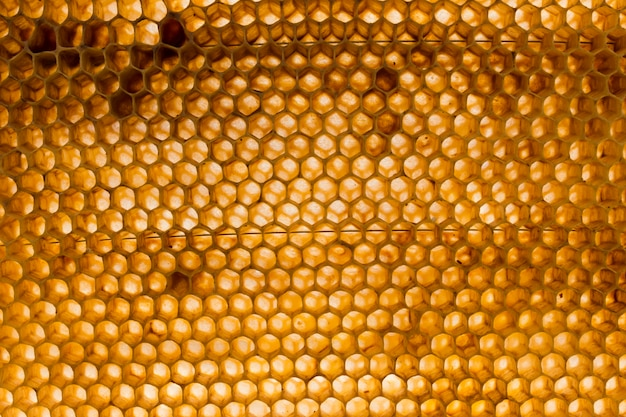 Top view honeycomb