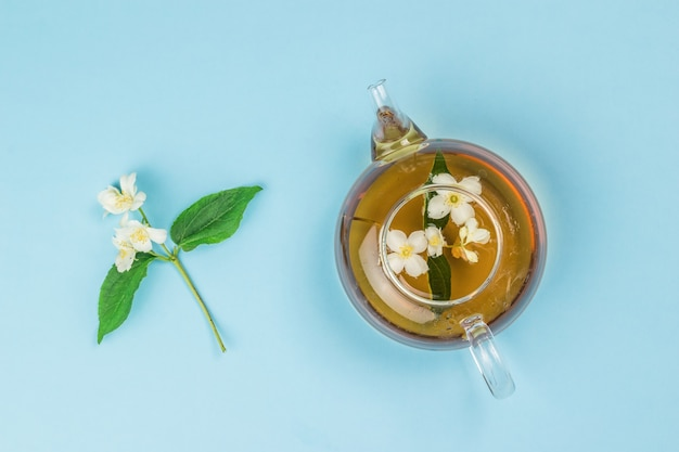 Top view of a jasmine flower and a glass teapot with tea on a blue background.