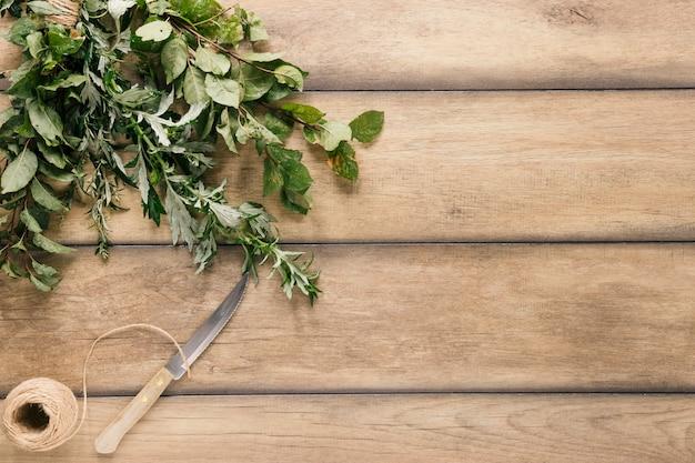Vista dall'alto del coltello; corda e varietà di foglie di pianta verde sul tavolo