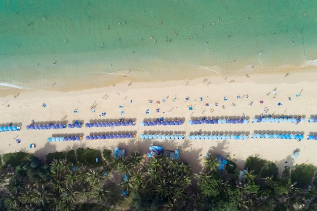Top view landscape of beautiful tropical sea in summer