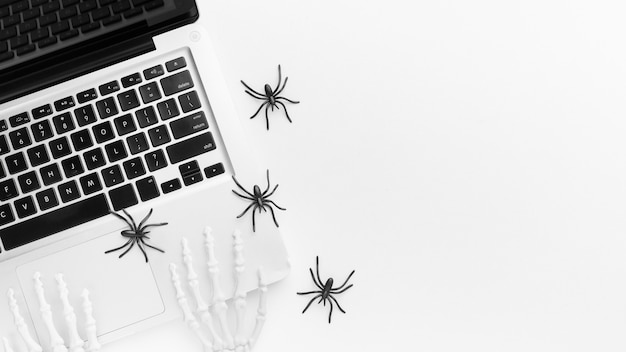 Top view laptop and creepy spiders with copy space