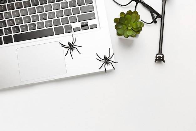Top view laptop with spooky spiders