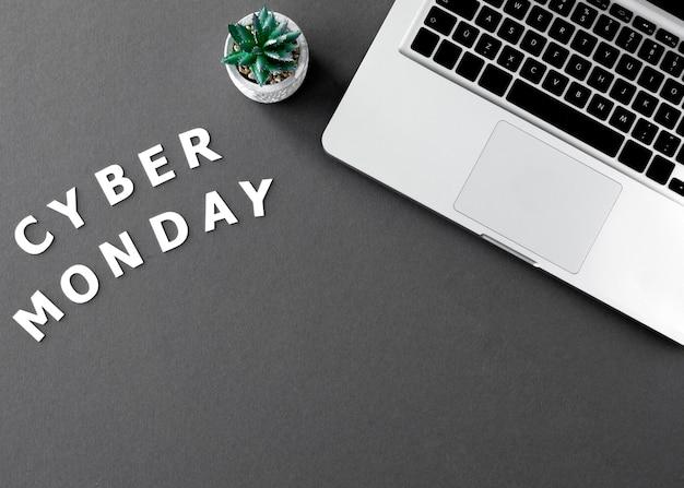 Vista dall'alto del laptop con succulenta per cyber lunedì