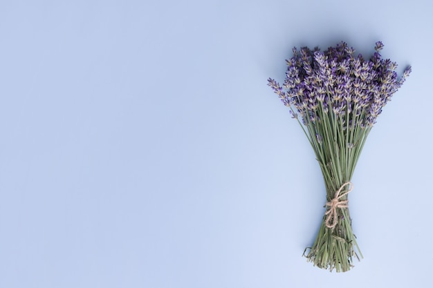 Top view lavender flowers in a bunch on a blue space. summer, spring minimal concept with copy space