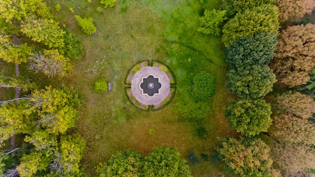 Top view of a lawn in the middle of the forest. aerial view.
