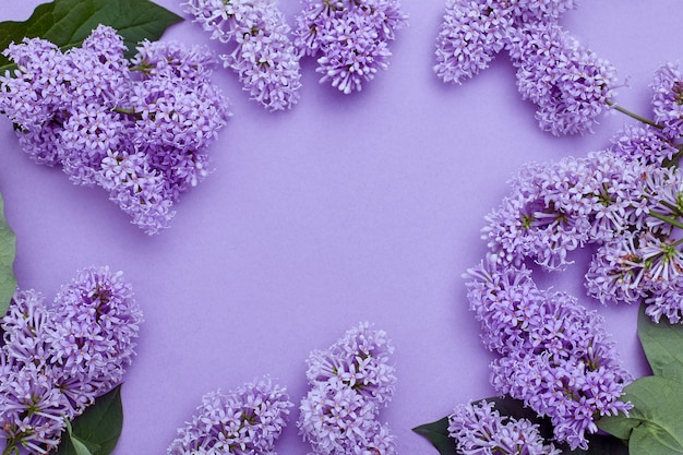 Top view of laying lilac flowers lying on the table, spring has come, copy space purple surface. lilac blossom, spring cosmetics for face and hands