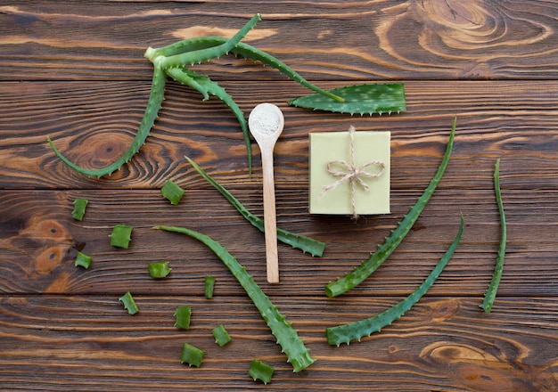 알로에 베라와 비누의 평면도 잎
