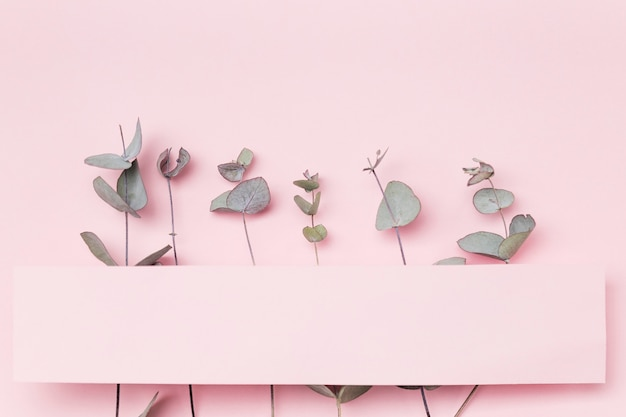 Вид сверху листья на розовом фоне с чистым листом бумаги